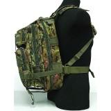 Level 3 Molle Assault Backpack CADPAT Digital Woodland