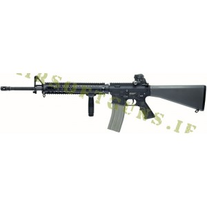 R5 Gun